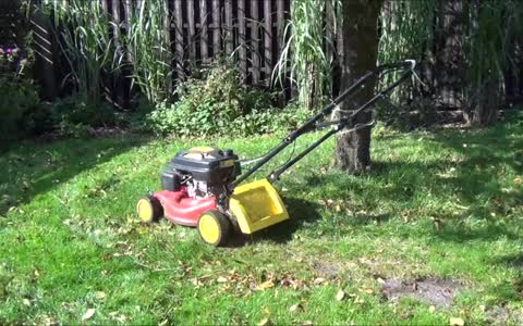 Is this the laziest possible way to cut the grass?