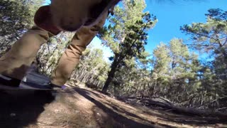 dirtboarding down a hill with my dogs while one of my dogs films - Video