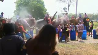 Thai Water Festival Is A Splash - Video