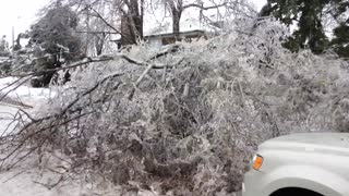 Ice Storm Damage - Video