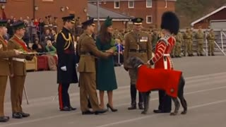 Duke And Duchess Of Cambridge Attend St Patrick's Day Parade - Video