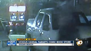 Vicious vandal targets comic book store - Video