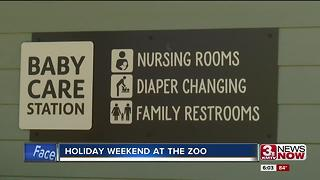 Busy holiday weekend at the zoo - Video