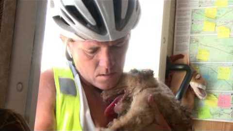 Woman Cycling In Desert Finds A Dying Puppy And Nurses It Back To Health