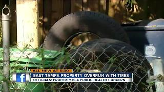 Tampa man arrested for having more than 1,000 tires in and around his home - Video