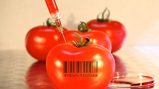 10 Worrying Facts About Genetically Modified Food - Video
