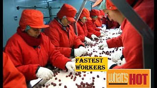 Fastest Workers Crazy Workers.. PEOPLE are AWESOME! - Video