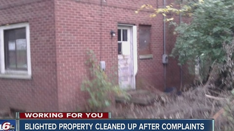 Blighted property cleaned up after complaints