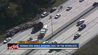 70-year-old woman killed trying to avoid dog on I-275