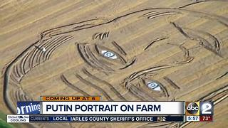 Italian farmer turns field into Putin portrait ahead of G20 - Video