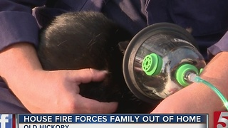 Family Displaced After Kitchen Fire - Video