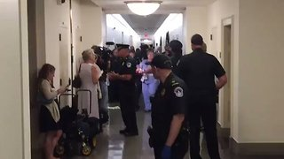 Healthcare Protesters Arrested Outside Speaker Paul Ryan's Office - Video
