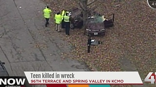 Teen dies, three others injured in car wreck - Video