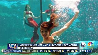 Weeki Wachee Springs State Park looks for new mermaids - Video
