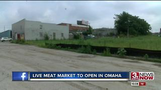 Live meat market could open late fall - Video