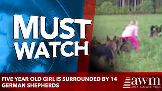 Five Year Old Girl Is Surrounded By 14 German Shepherds - Video