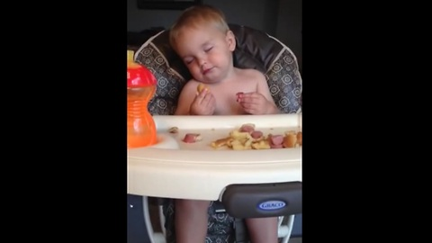 Baby falls asleep while eating in his highchair