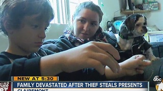 San Diego Kids Devastated After Thief Steals Presents from Tree - Video