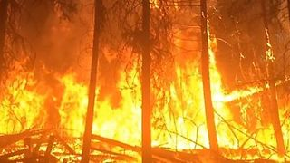 British Columbia Wildfire Burns Over 6,000 Acres - Video