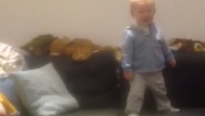 Daredevil baby belly flops into ball pit - Video