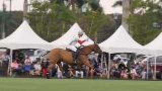 Play Polo In Palm Beach - Video