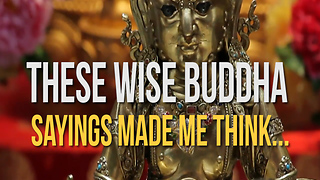 These Wise Buddha Sayings Made Me Think. - Video