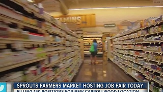 Sprouts farmers market hosting job fair in Tampa on Thursday - Video