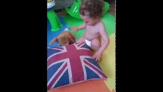 Toddler Has Adorable Reaction to Brexit - Video