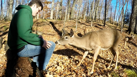 Young man shares unforgettable moment with wild deer