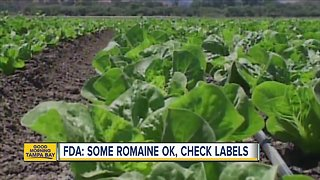 FDA says some romaine lettuce is okay, check labels first
