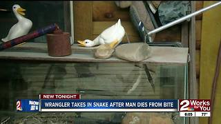 Man bitten by rattlesnake, dies - Video