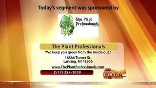The Plant Professionals - 11/07/17