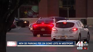 Patrons frustrated with Westport parking fee - Video