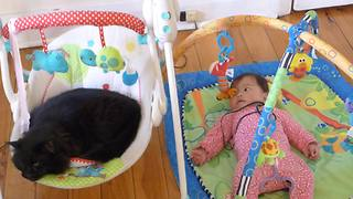 Baby watches in disbelief as cat steals her rocker - Video