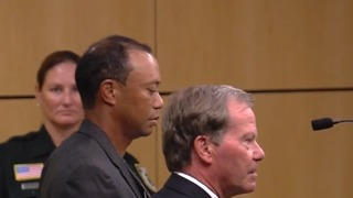Tiger Woods pleads guilty to reckless driving - Video