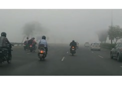 Smog Creates Whiteout Conditions on Delhi Roads - Video