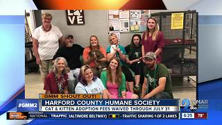 Good morning from the Harford County Humane Society! - Video