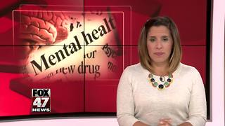 Special mental health court opens in Upper Peninsula - Video