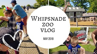 Whipsnade zoo England  - Video