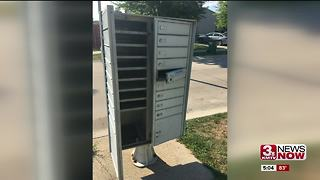 Possible mail thief in Papillion - Video
