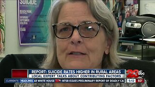 Report: people at higher risk of suicide in rural areas, near gun shops