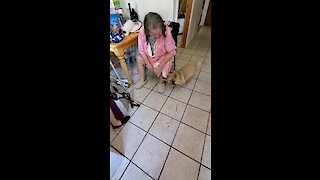 Dog Ecstatic After Owner Returns Home From The Hospital