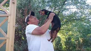 Dog reunites with previous owner after 2 years - Video