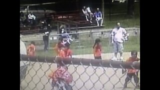 Central Valley PA little league Baseball