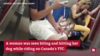 Disturbing video shows woman abusing her dog on public transit | Rare News - Video