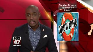 Toddler drowns in Hillsdale County pond - Video