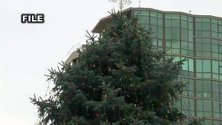 Roads impacted by Boise Christmas Tree Move - Video