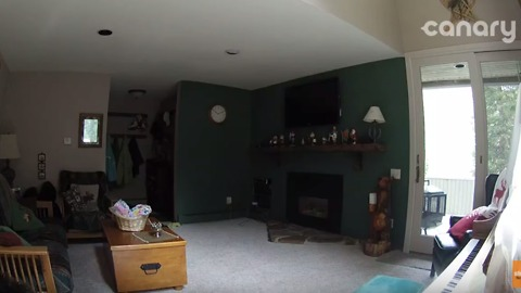 Family Looks at Security Camera Footage and Sees Something Very Unusual