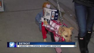 Canine costume contest in Detroit