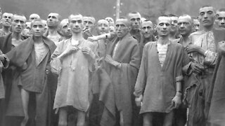 Did the Political Prisoners of the Holocaust Live Politics?